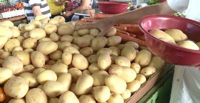 Preço da batata aumenta 41,1% em MT e nutricionista dá dicas para substituir legume nas receitas